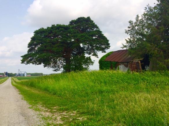 Barn & Road